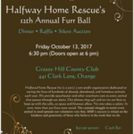 12th Annual Furr Ball